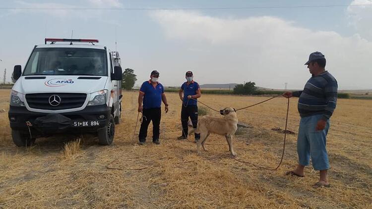3 gün kuyuda mahsur kalan çoban köpeği kurtarıldı