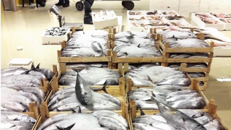 İstanbul'da 7 ton balığa el koyuldu