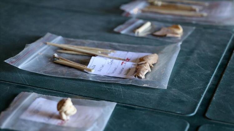 Antik kentten çıkarılan kemikler keçilerin DNA'sını aydınlatacak