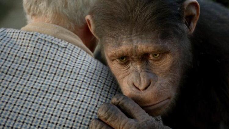 Maymunlar Cehennemi Başlangıç filmi oyuncuları kimdir, konusu nedir? İşte Maymunlar Cehennemi oyuncu kadrosu