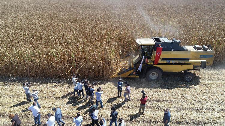 Diyarbakır'da 380 bin dekar alanda mısır mesaisi başladı