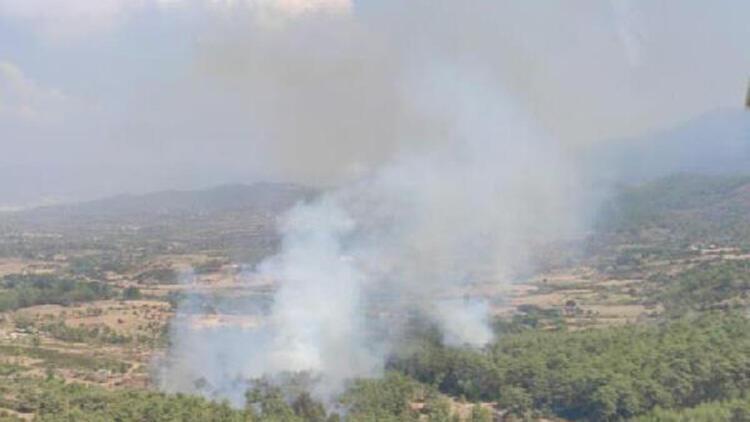 Son dakika... Muğla'da orman yangını