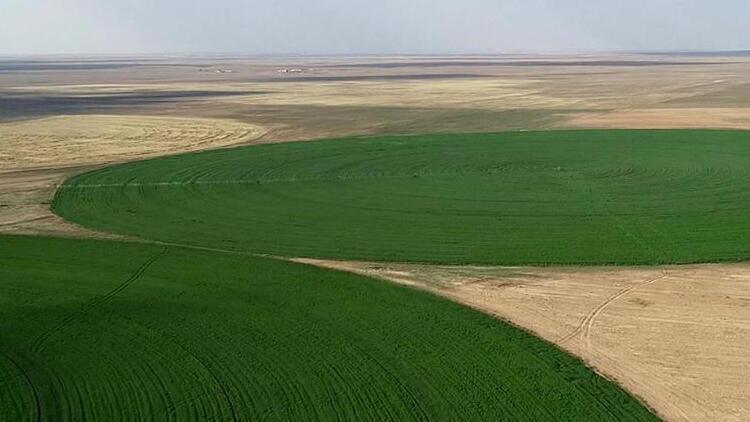 """Hazineye ait tarım arazilerinde gençlere """"pozitif ayrımcılık"""" talebi"""