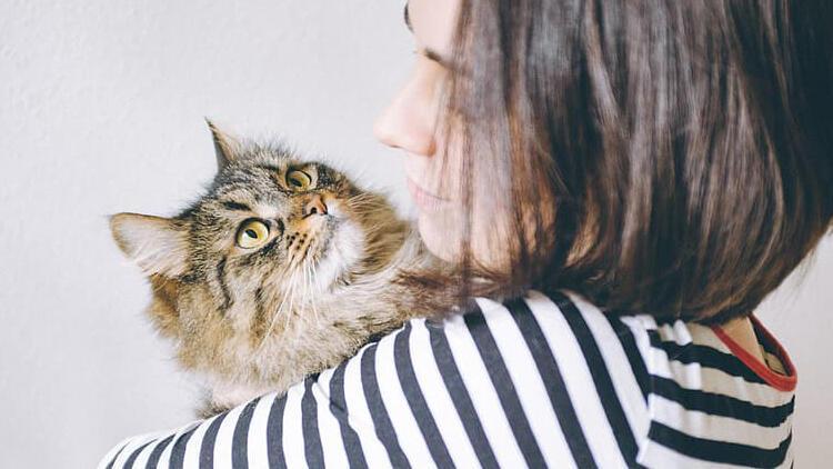 Hamilelikte evcil hayvan (kedi, köpek, kuş) bakımı