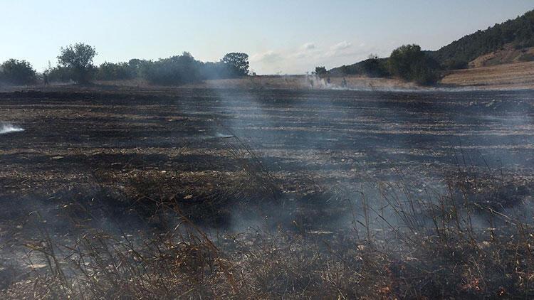 Balıkesir'de makilik alanda çıkan yangın söndürüldü