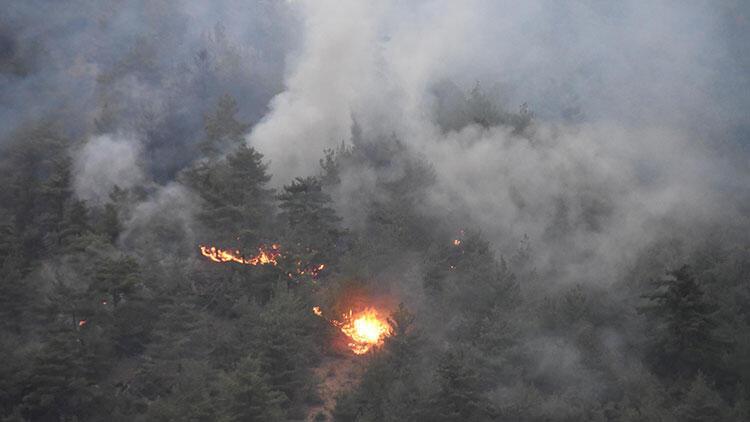 Eskişehirdeki orman yangını kontrol altına alındı