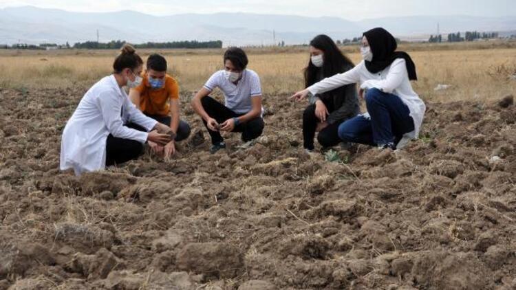 Afrika'da safran üretmek için proje tasarlayıp Teknofest'te finale kaldılar