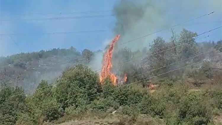 Ereğlide 2 dönüm ormanlık alan yandı