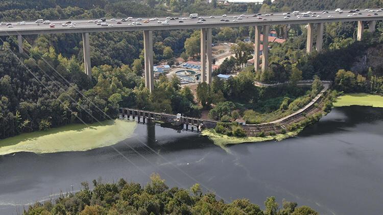 İstanbulda Elmalı Barajı yine yeşile büründü