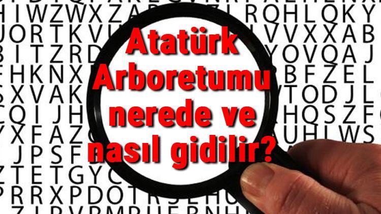 Atatürk Arboretumu nerede ve nasıl gidilir Atatürk Arboretumu iletişim bilgileri, yeme, içme ve giriş ücreti (2020)