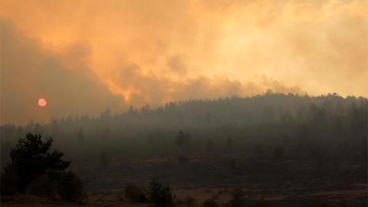 Bolu'da orman yangını kontrol altına alındı; 40 hektar zarar gördü