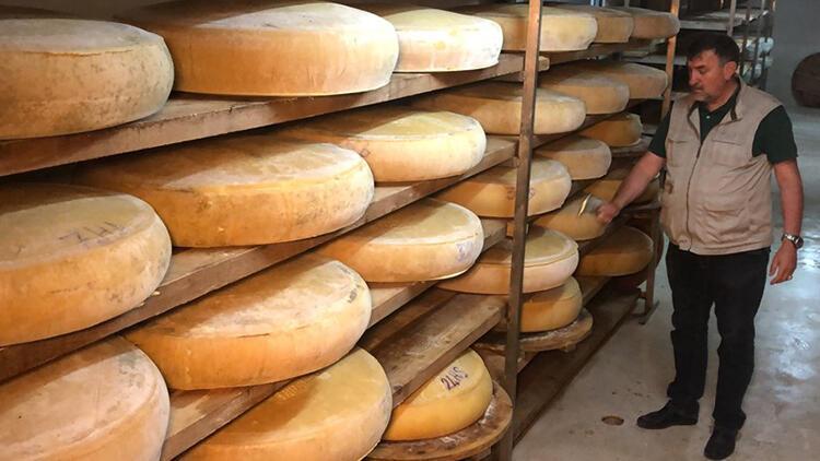İsviçre'nin Appenzeller peynirinin rakibi: Kars kaşarı