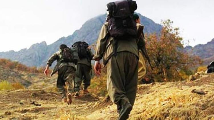 Mardinde iki PKKlı terörist teslim oldu