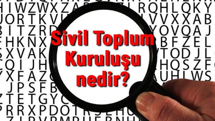 Sivil Toplum Kuruluşu nedir Sivil Toplum Kuruluşları nelerdir STK özellikleri, amaçları ve görevleri