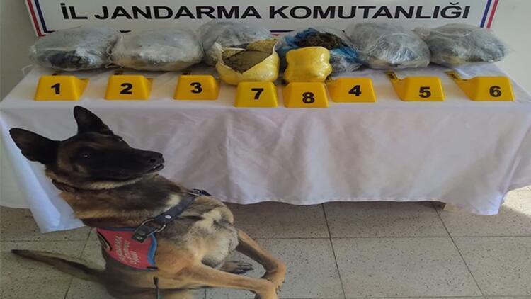 Bingöl'de uyuşturucu operasyonu: 6 gözaltı