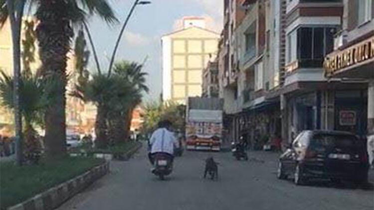Tasmasından tuttukları köpeği, motosikletin arkasından koşturdular