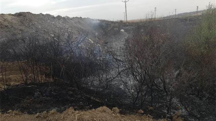 Malkara'da çıkan anız yangınında 2 bin dönüm arazi zarar gördü