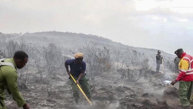 Afrika'nın en yüksek dağındaki yangında 500 gönüllü görev yapıyor