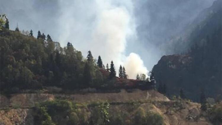 Artvin'in Murgul ilçesinde örtü yangını