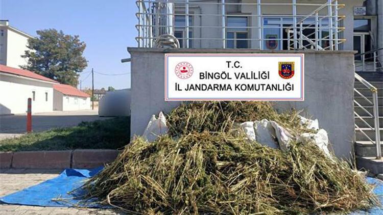 Bingöl'de 40 kilo esrar ele geçirildi