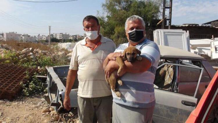 Hurda aracın altında sıkışan yavru köpeği esnaf kurtardı
