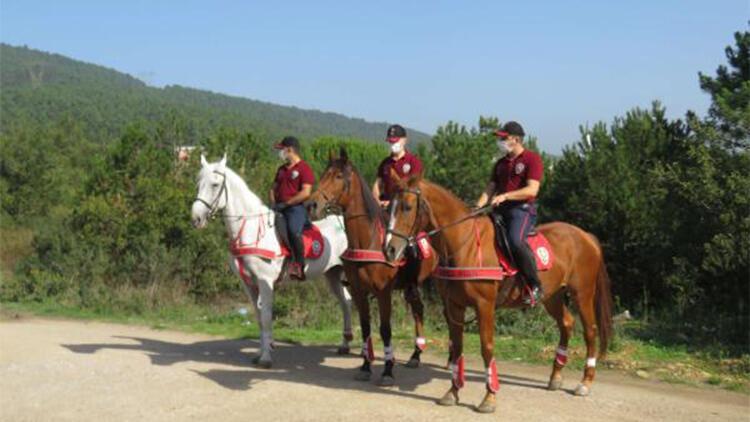 Atlı polisler Çavuşbaşı Ormanı'nda denetim yaptı