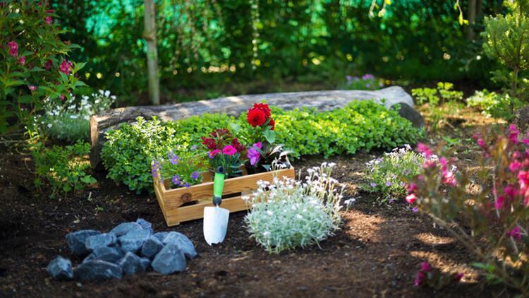 Küçük bahçenizin harika görünmesine yardımcı olacak 7 ipucu