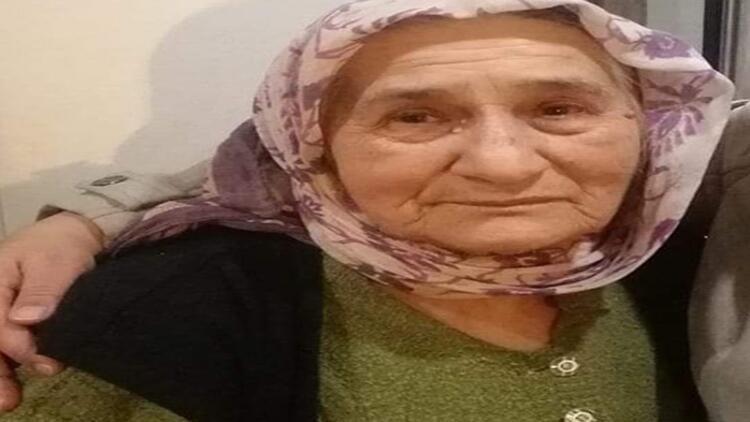 Kestane toplamak için evden ayrılan yaşlı kadından haber alınamıyor