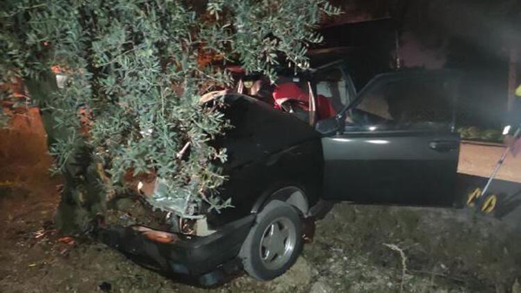 Otomobil zeytin ağacına çarptı, sürücü yaralı