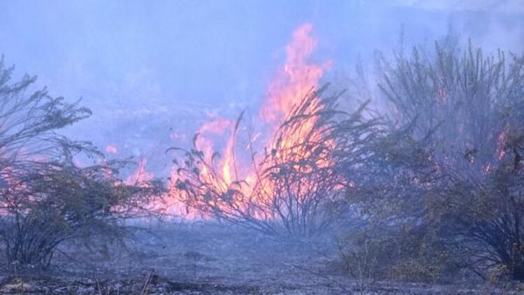 Antalyada çalılık yangınını, itfaiyecilerle beraber söndürdüler