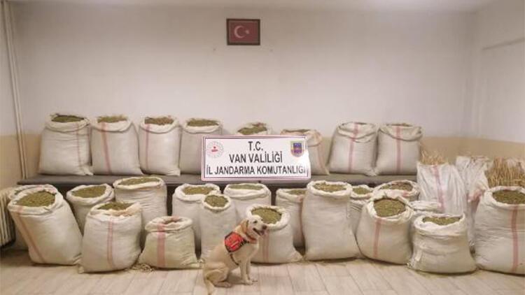 Vanda bir evde 732 kilo uyuşturucu ele geçirildi