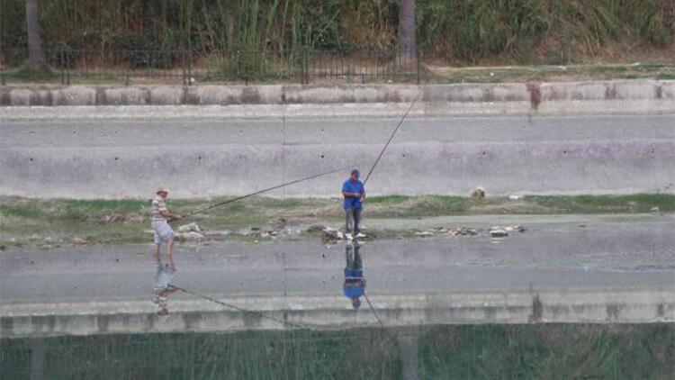 Suyu çekilen Seyhan Nehrine inip, balık için hayatlarını tehlikeye attılar