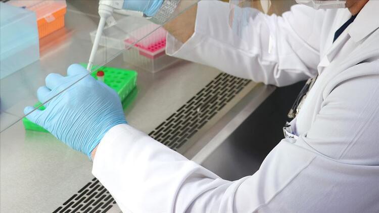 e-Nabız ile grip aşısı sorgulama nasıl yapılır