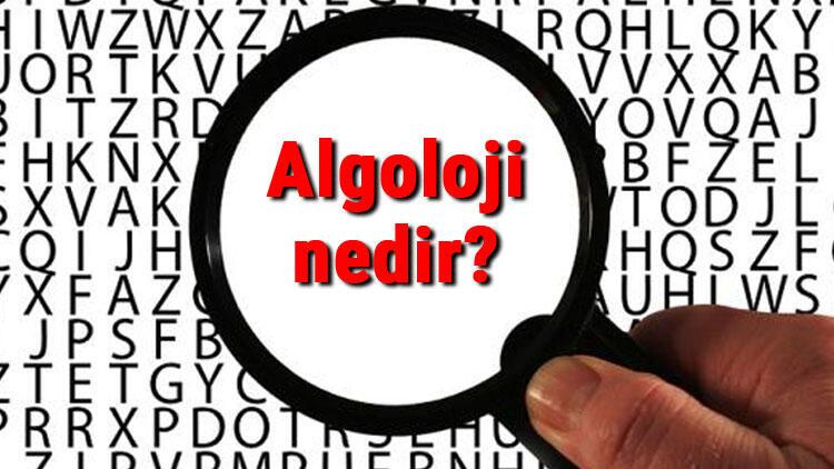 Algoloji nedir Algolog ne demek Ağrı tedavisi uzmanı (Algolog) neye ve hangi hastalıklara bakar