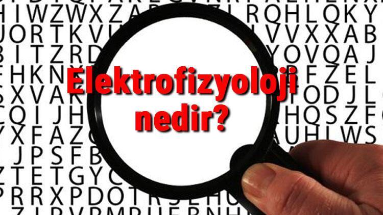 Elektrofizyoloji nedir Elektrofizyoloji hangi hastalıkların tedavisinde kullanılır ve neyi inceler