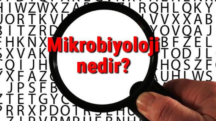 Mikrobiyoloji nedir Mikrobiyolog ne demek Mikrobiyoloji bilimi neler ile ilgilenir