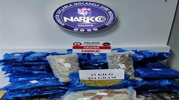 Kapıkule Sınır Kapısında 44 kilogram skunk ele geçirildi