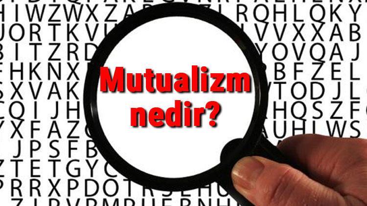 Mutualizm nedir? Mutualizm (Karşılıklı fayda birlikteliği) hakkında bilgi