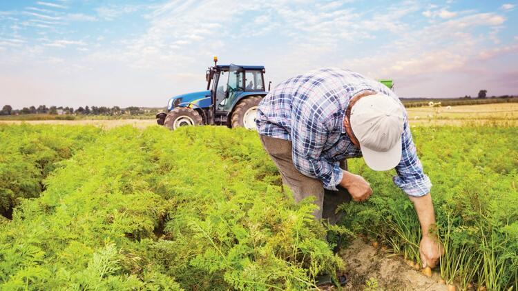 2021 tarım ve hayvancılık yılı