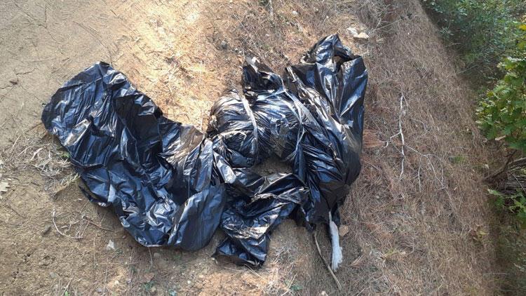 Son dakika... Köyün yanında vahşet... Çöp torbasını açınca dehşete düştüler