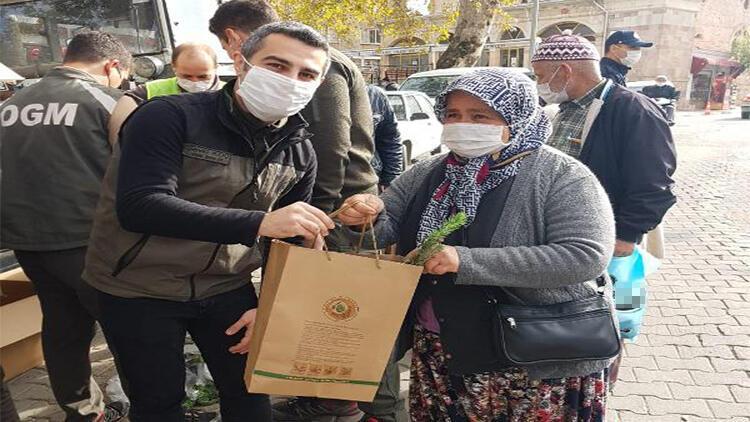 Çanakkale'de vatandaşlara 2 bin fıstık çamı fidanı dağıtıldı