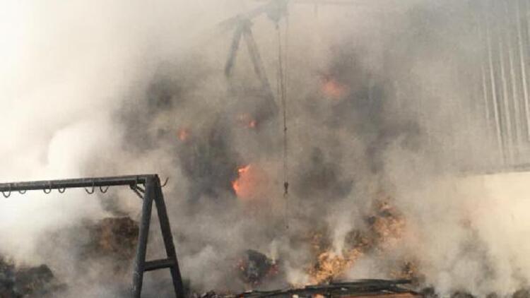 Ahırda yangın çıktı, 2 büyükbaş öldü