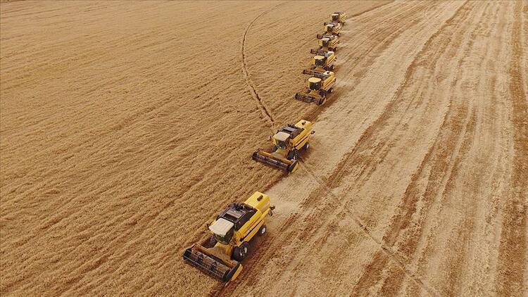 Sakarya'da sulanan tarım arazileriyle ekonomiye 375 milyon lira katkı sağlandı