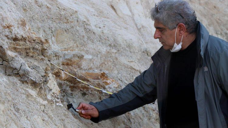 Edirne'de mamut fosilleri bulundu! 'Çok heyecanlandık...'