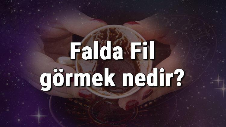 Falda Fil görmek nedir? Kahve falında fil görmenin anlamı