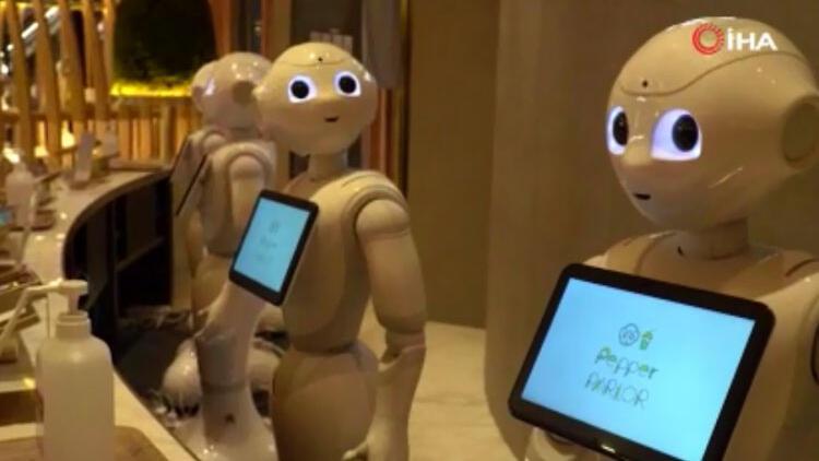 Japonya'da robot garson dönemi başladı! Hem servis hem sohbet