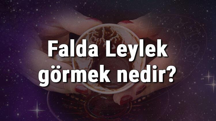 Falda Leylek görmek nedir? Kahve falında leylek görmenin anlamı