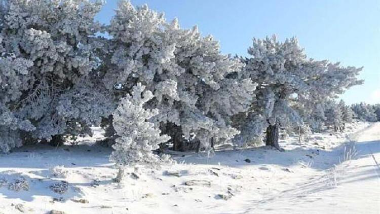 Muğla'nın 3 ilçesinde kar yağışı