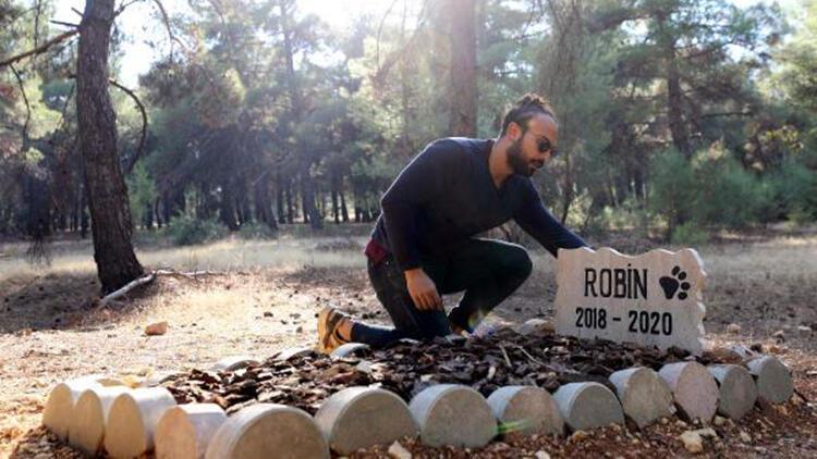 Ölen köpeğine kampüste mezar yaptırdı