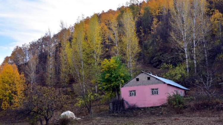 Muş'ta sonbaharın güzellikleri fotoğraf kareleriyle ölümsüzleştirildi